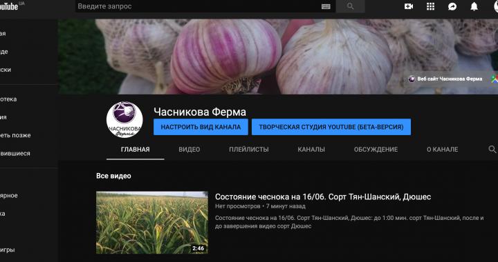 youtube канал Часникова Ферма