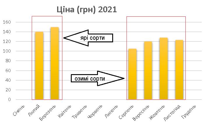 ціна на часник в 2021 році